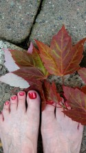 Nancie's toes enjoying fall